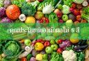 ประโยชน์ของผักผลไม้ 5 สี กินดีต้านโรคภัย จัดไปอย่าให้เสีย